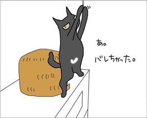 電気をつける猫