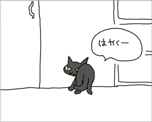 猫も人間も大好きなもの