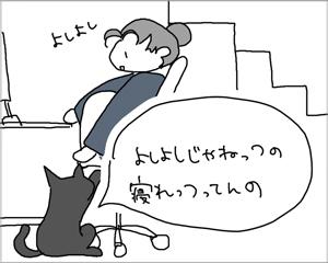 猫にも時間の概念はあるようだ