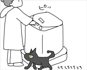 猫ふんじゃった