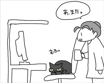 猫は狭いほうが好きっていうから