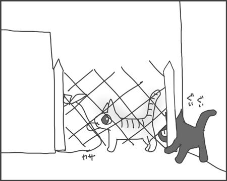 柵の向こう