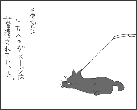 プレイキャット・ミニ3